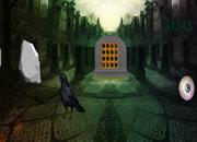墓地黑猫救援