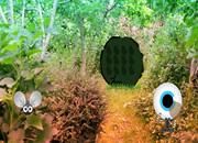 灌木林逃离