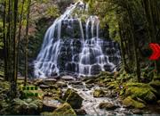 Waterfalls Fun Escape