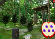 毛绒鹦鹉花园逃脱