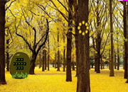 Blossam Yellow Forest Escape