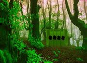 Plantation Leaf Forest Escape