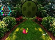 Rock Garden Escape
