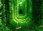 Growing Green Tunnel Escape