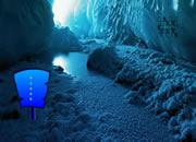 营救缓行动物逃离冰洞