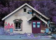 逃離遺棄的木屋