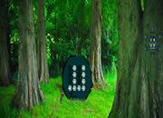 逃离魔幻森林