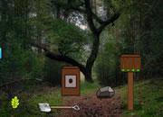 寻宝逃离森林