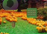 Spooky Halloween Garden Escape