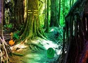 逃离翡翠感恩森林