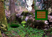 白猫汽车森林逃离