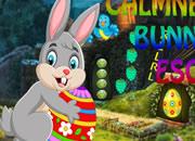 冷静的兔子逃脱