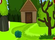 松鼠农场逃脱-