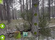 重返冰冻森林