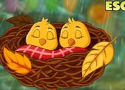 Buoyant Sleeping Birds Escape