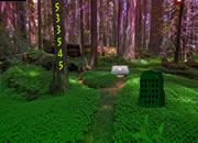森林美学女王逃脱