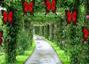 耀眼的花園逃脫