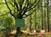 寻找森林房子