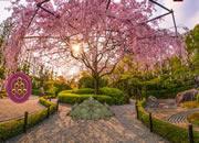 日本花園逃離