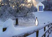 Mystical Snow Land Escape