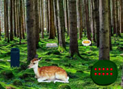 Bright Deer Forest Escape