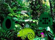 Chameleon Rain Forest Escape
