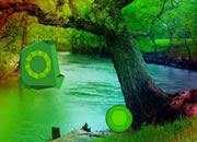 彩虹瀑布森林逃離