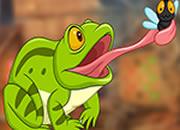 快樂聰明的青蛙逃脫