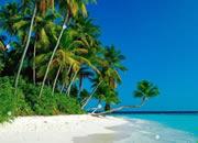 熱帶島上找水晶