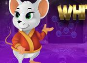 Cheerful White Rat Escape