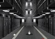 Federal Prison Escape