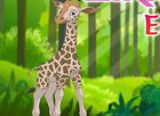 Happy Giraffe Escape