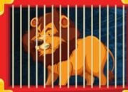 Rescue Of Circus Lion