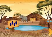 营救野生猎豹-