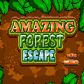 Amazing Forest Escape